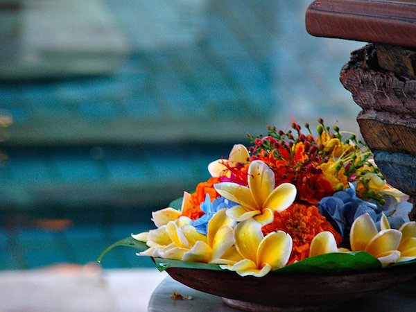 bali-flowers-and-pool2