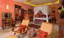 Villa rental Ubud, Bali, #1065