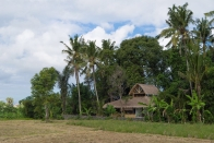 Villa rental Gianyar, Bali, #1563